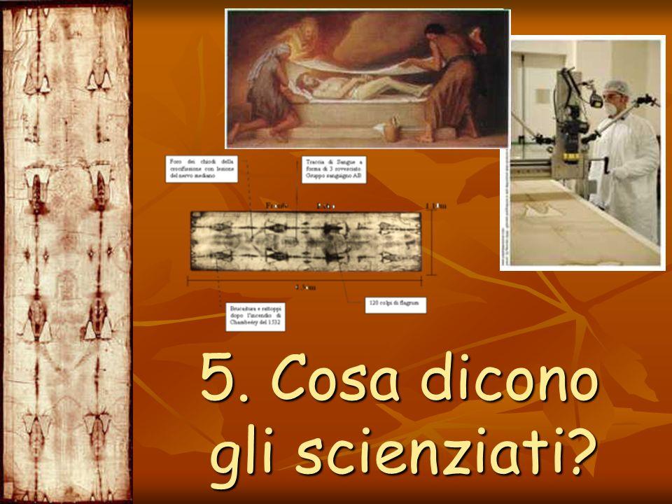 5. Cosa dicono gli scienziati? 5. Cosa dicono gli scienziati?