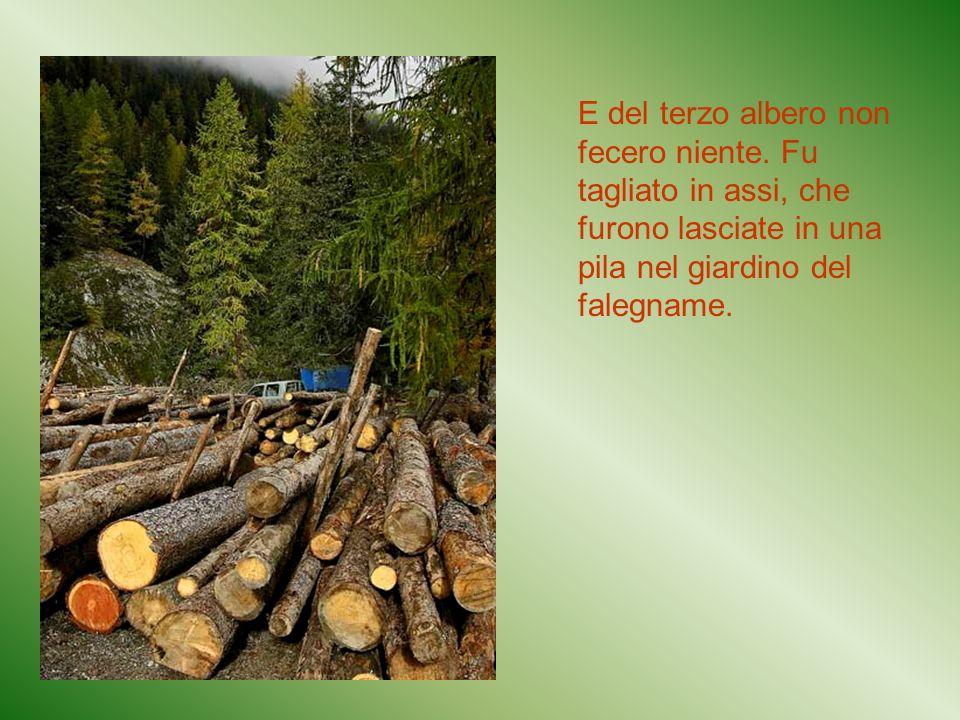 E del terzo albero non fecero niente. Fu tagliato in assi, che furono lasciate in una pila nel giardino del falegname.