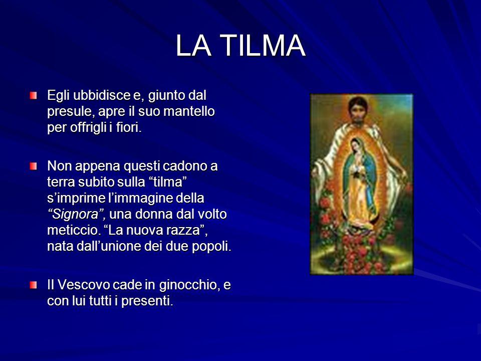 SEGNI DI MARIA....La Vergine si manifesta tra fiori in un rifulgere di raggi solari.