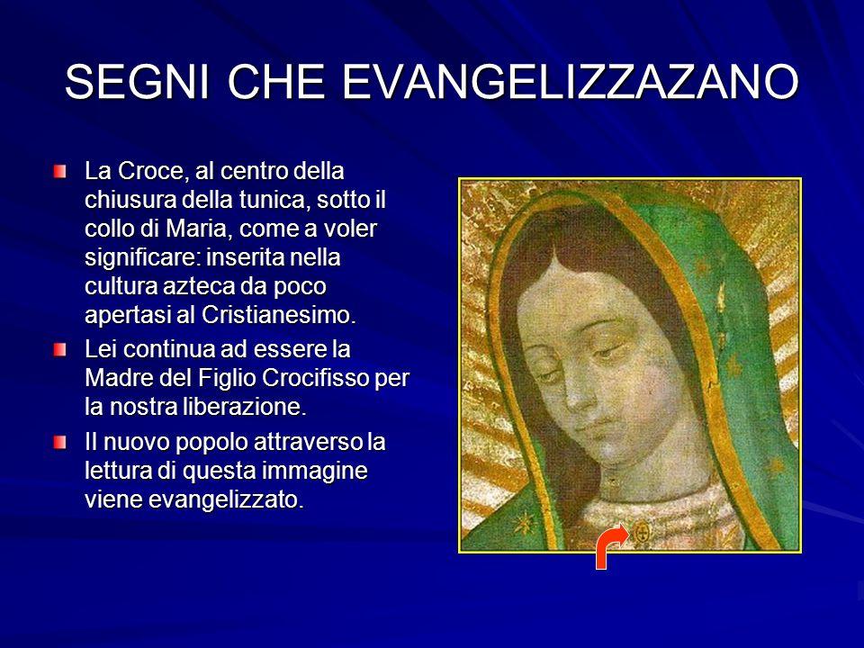 SEGNI CHE EVANGELIZZAZANO La Croce, al centro della chiusura della tunica, sotto il collo di Maria, come a voler significare: inserita nella cultura azteca da poco apertasi al Cristianesimo.