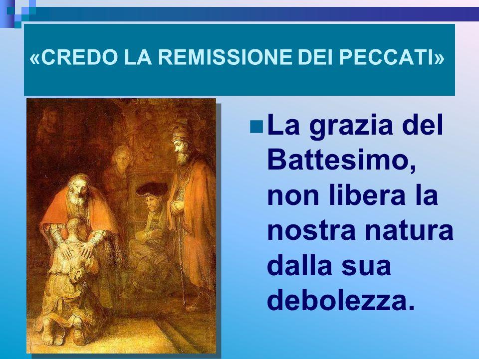 «CREDO LA REMISSIONE DEI PECCATI» La grazia del Battesimo, non libera la nostra natura dalla sua debolezza. RITARDO