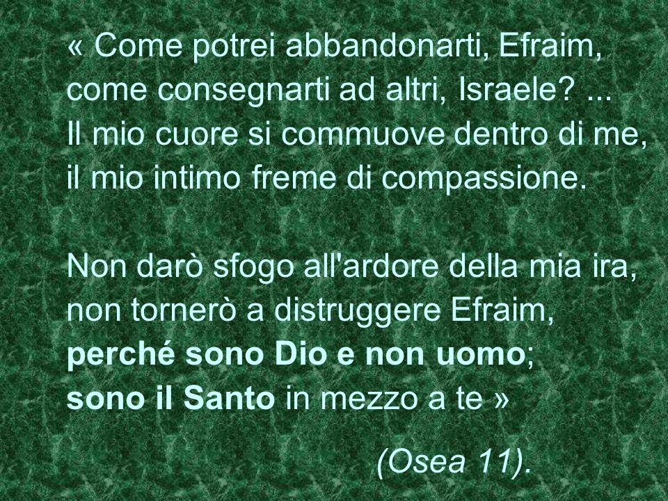 « Come potrei abbandonarti, Efraim, come consegnarti ad altri, Israele?... Il mio cuore si commuove dentro di me, il mio intimo freme di compassione.