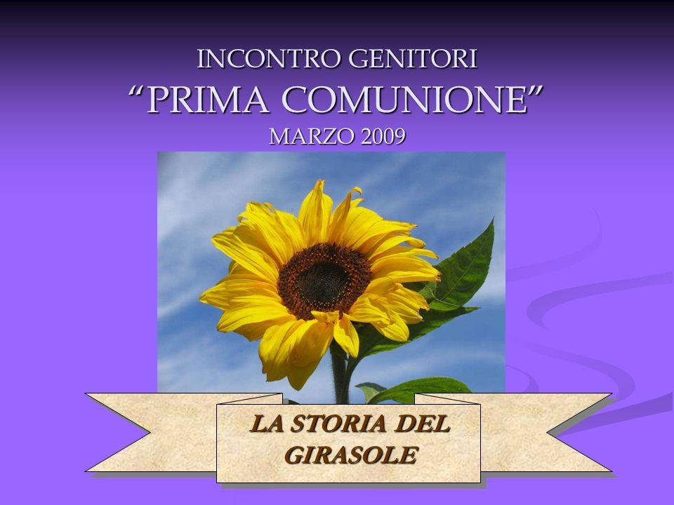 INCONTRO GENITORI PRIMA COMUNIONE MARZO 2009 LA STORIA DEL GIRASOLE