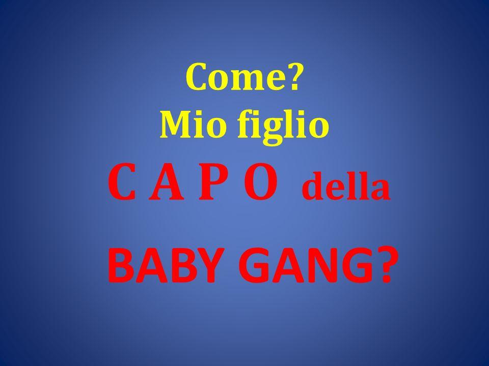 Come? Mio figlio C A P O della BABY GANG?