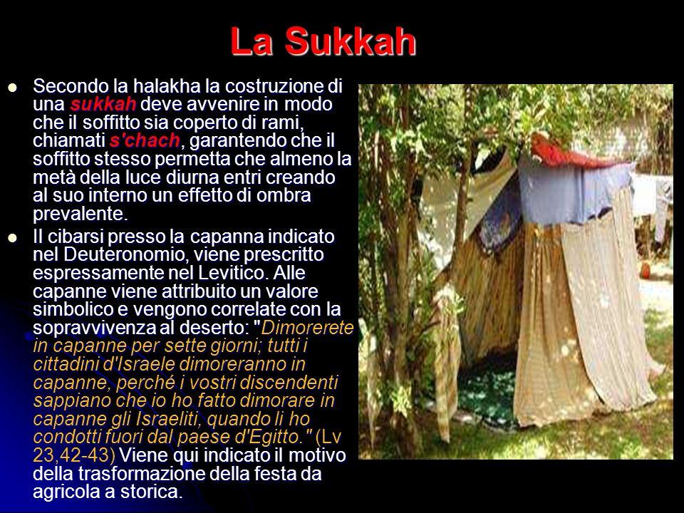 La Sukkah Secondo la halakha la costruzione di una sukkah deve avvenire in modo che il soffitto sia coperto di rami, chiamati s'chach, garantendo che