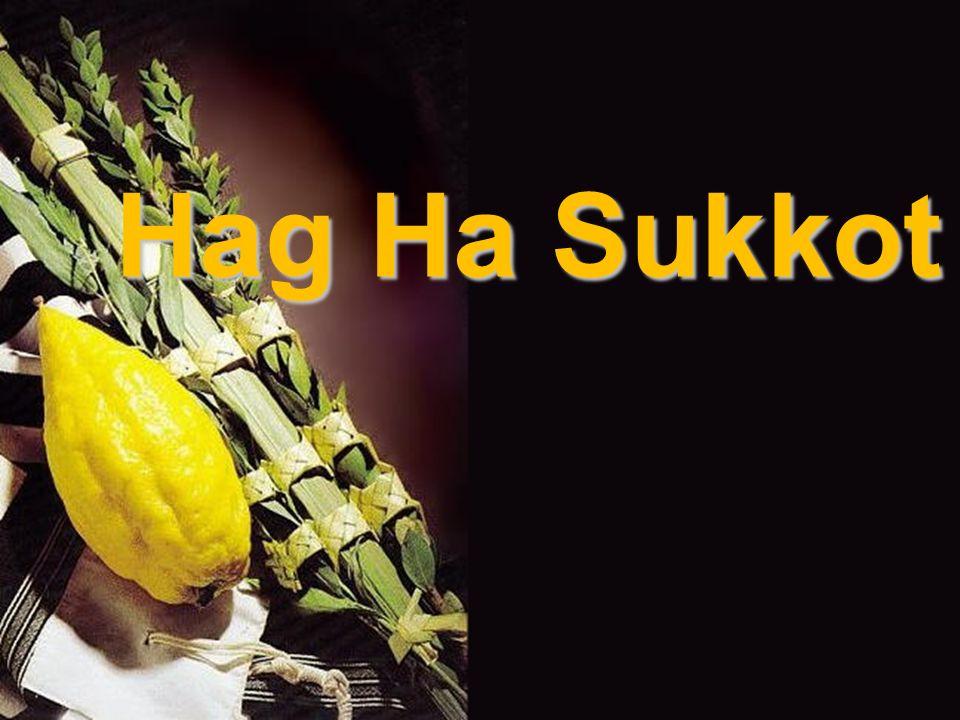 Hag Ha Sukkot