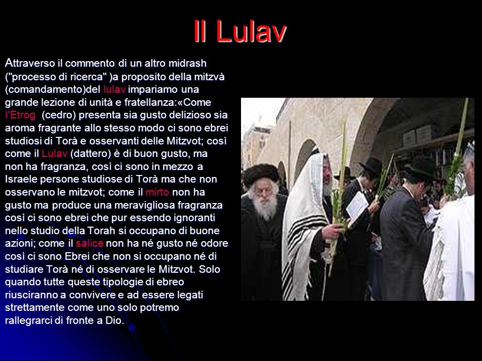 Il Lulav A ttraverso il commento di un altro midrash (