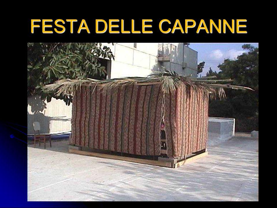 FESTA DELLE CAPANNE