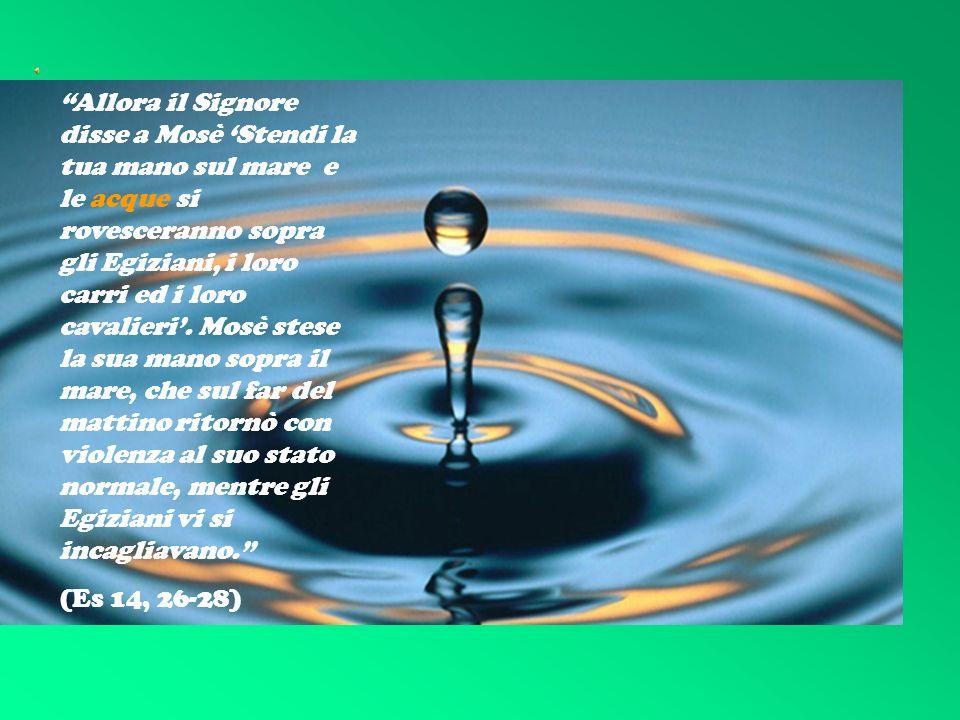 I SETTE D O N I D E L L O S P I R I T O S A N T O Un germoglio spunterà dal tronco di Iesse, su di lui si poserà lo spirito del Signore, spirito di sapienza e di intelligenza, spirito di consiglio e di fortezza, spirito di conoscenza e di timore del Signore (Is 11, 2-3)
