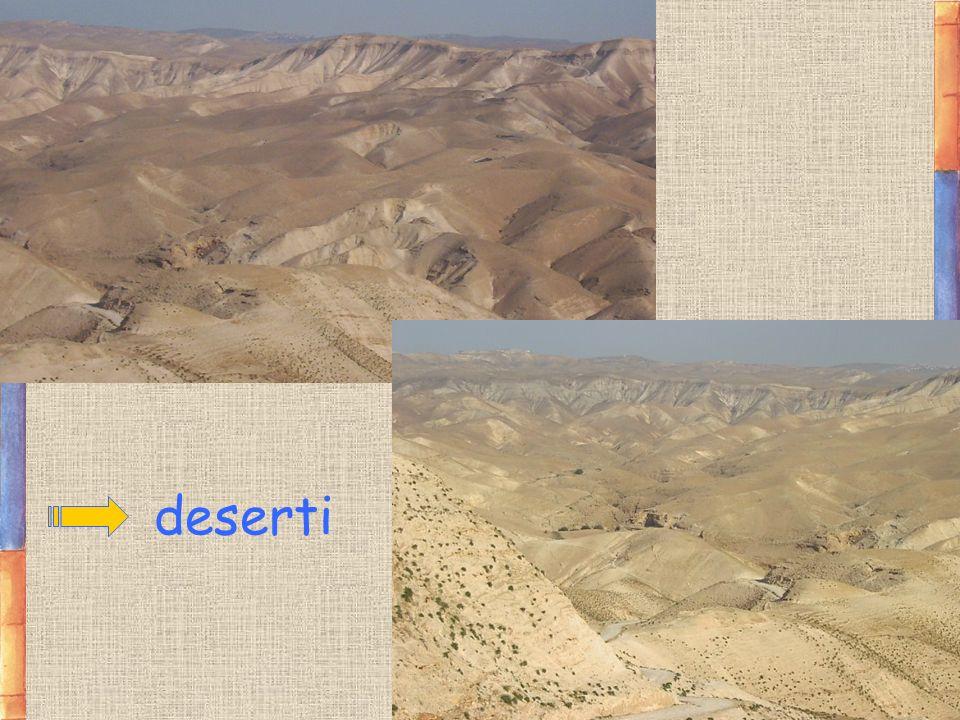 deserti