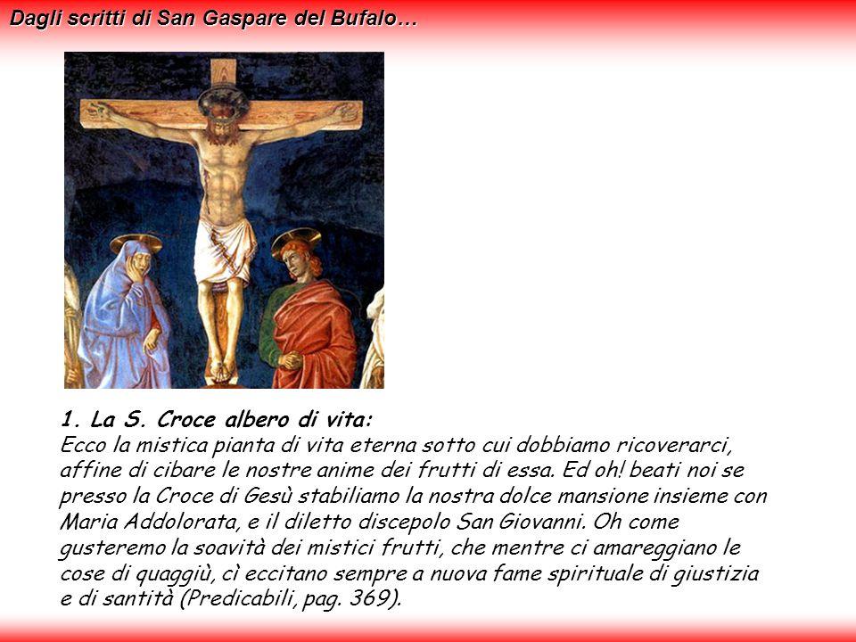 Che grande albero è mai la Croce!...