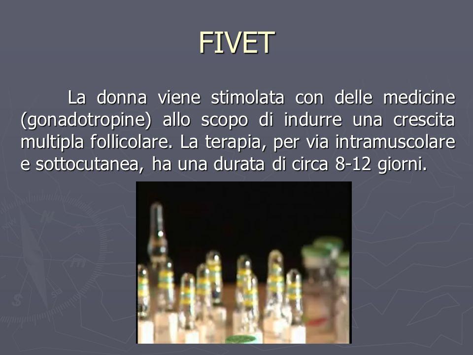 FIVET La donna viene stimolata con delle medicine (gonadotropine) allo scopo di indurre una crescita multipla follicolare. La terapia, per via intramu