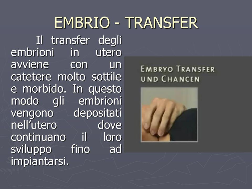 EMBRIO - TRANSFER Il transfer degli embrioni in utero avviene con un catetere molto sottile e morbido. In questo modo gli embrioni vengono depositati
