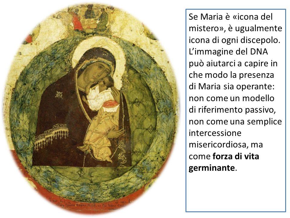 Se Maria è «icona del mistero», è ugualmente icona di ogni discepolo. Limmagine del DNA può aiutarci a capire in che modo la presenza di Maria sia ope