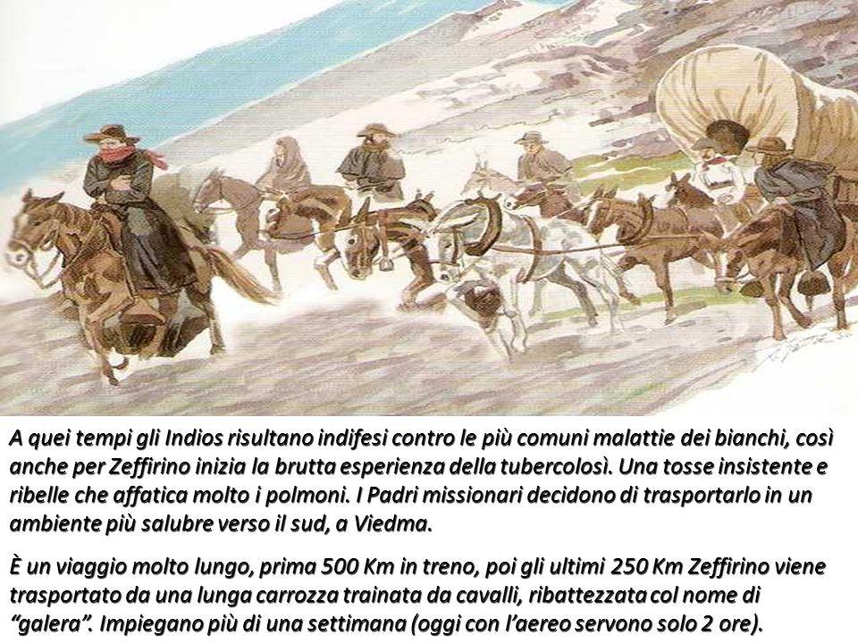 A quei tempi gli Indios risultano indifesi contro le più comuni malattie dei bianchi, così anche per Zeffirino inizia la brutta esperienza della tuber