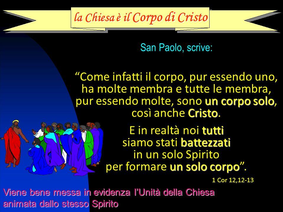 la Chiesa è il Corpo di Cristo San Paolo, scrive: Come infatti il corpo, pur essendo uno, ha molte membra e tutte le membra, pur essendo molte, sono u uu un corpo solo, così anche C CC Cristo.