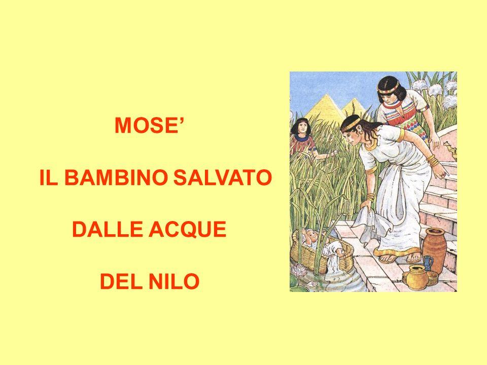 MOSE IL BAMBINO SALVATO DALLE ACQUE DEL NILO