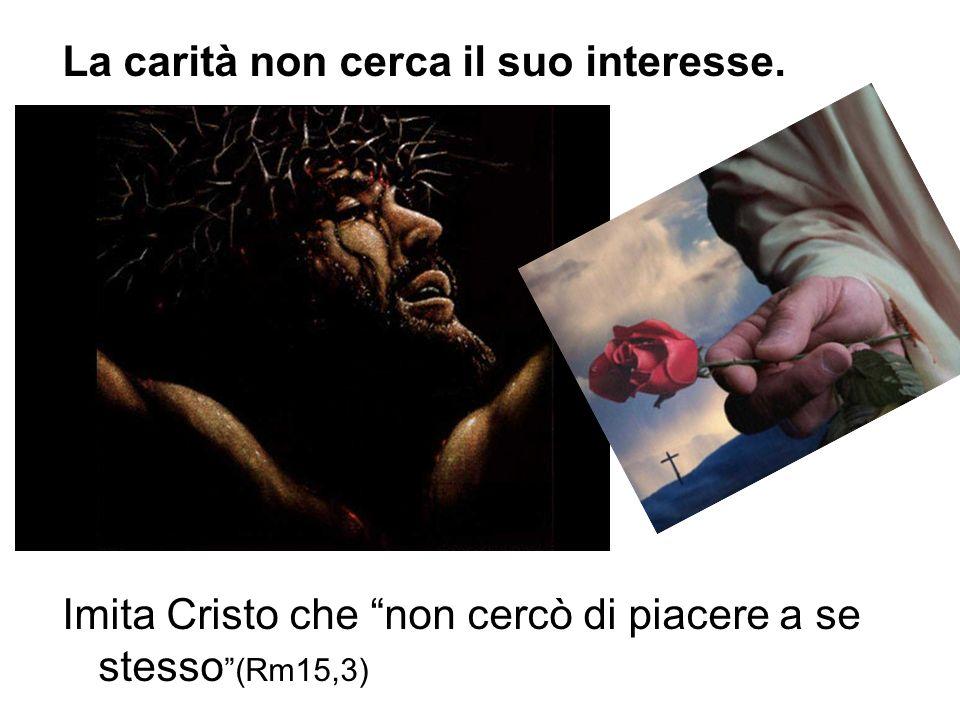 La carità non cerca il suo interesse. Imita Cristo che non cercò di piacere a se stesso (Rm15,3)