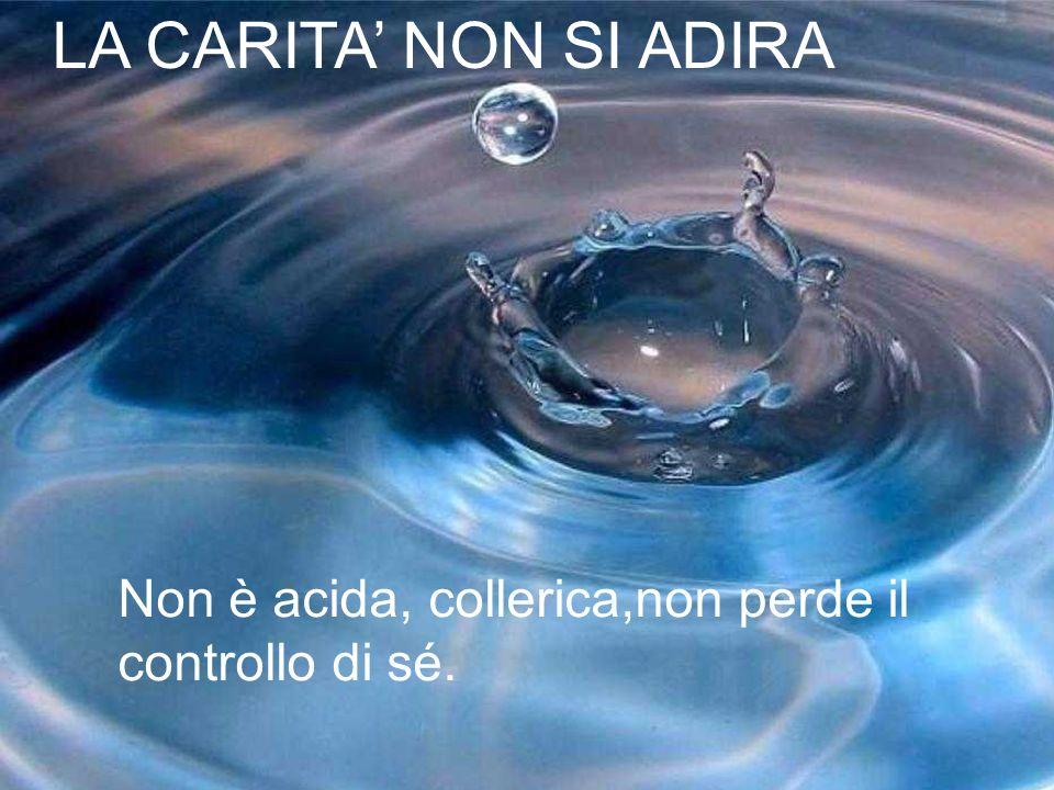LA CARITA NON SI ADIRA Non è acida, collerica,non perde il controllo di sé.