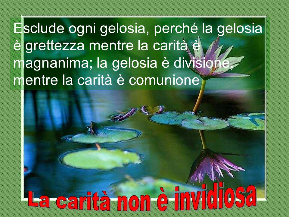 Esclude ogni gelosia, perché la gelosia è grettezza mentre la carità è magnanima; la gelosia è divisione, mentre la carità è comunione