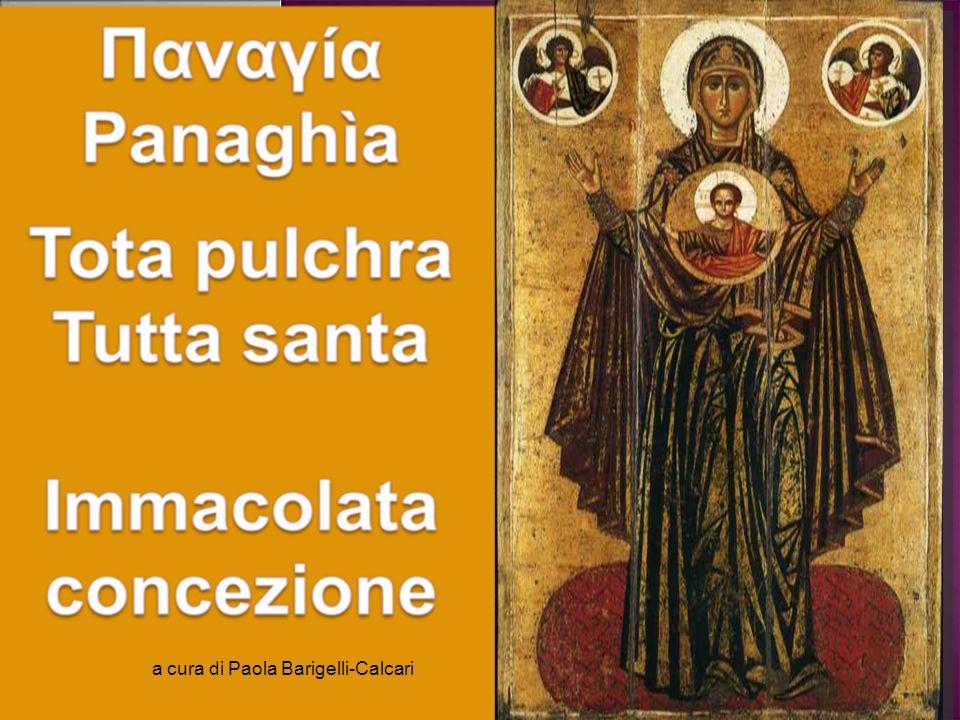 a cura di Paola Barigelli-Calcari