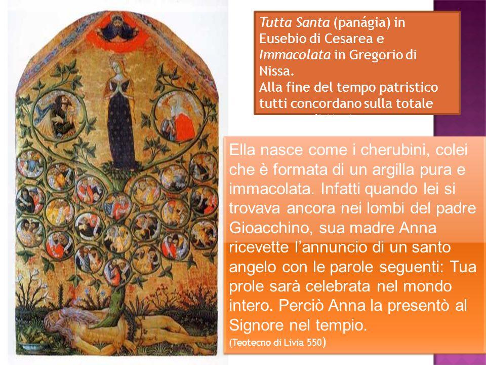 Tutta Santa (panágia) in Eusebio di Cesarea e Immacolata in Gregorio di Nissa. Alla fine del tempo patristico tutti concordano sulla totale purezza di
