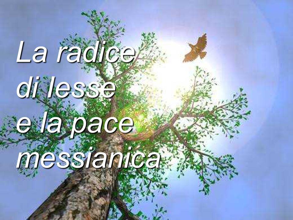 La radice di Iesse e la pace messianica