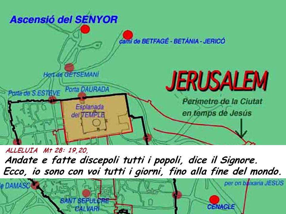 ALLELUIA Mt 28: 19,20, Andate e fatte discepoli tutti i popoli, dice il Signore.