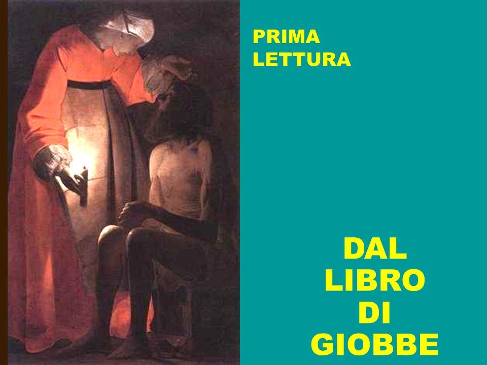 PRIMA LETTURA DAL LIBRO DI GIOBBE
