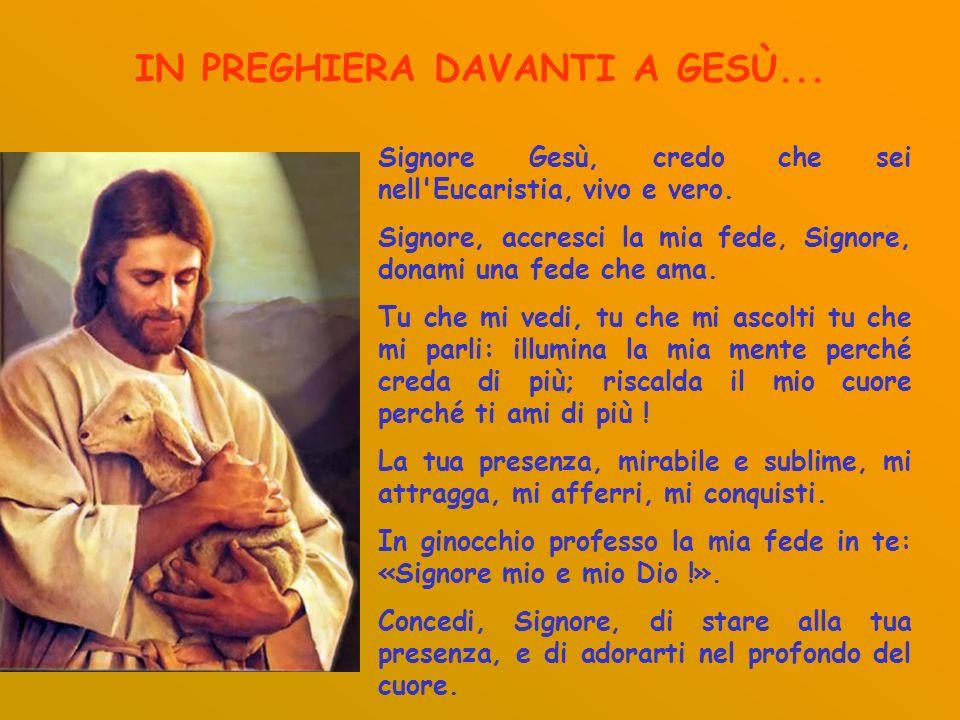 IN PREGHIERA DAVANTI A GESÙ... Signore Gesù, credo che sei nell'Eucaristia, vivo e vero. Signore, accresci la mia fede, Signore, donami una fede che a