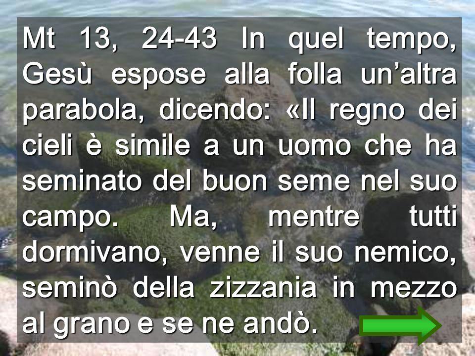 Mt 13, 24-43 In quel tempo, Gesù espose alla folla unaltra parabola, dicendo: «Il regno dei cieli è simile a un uomo che ha seminato del buon seme nel suo campo.
