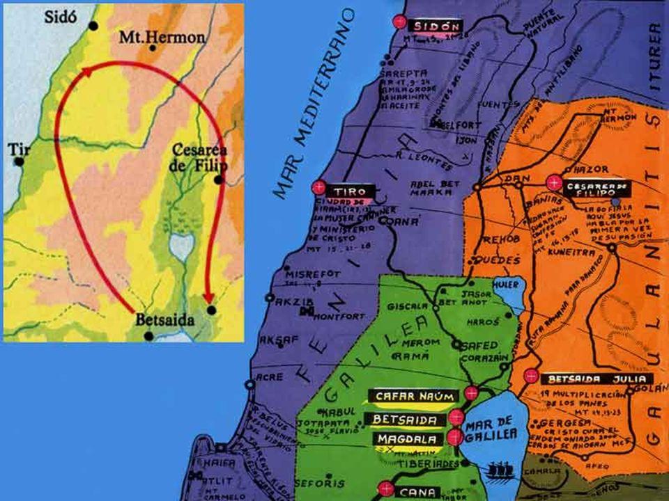 ( Dal vangelo secondo Matteo ) Mt 15, 21-28 In quel tempo, partito di là, Gesù si ritirò verso la zona di Tiro e di Sidòne. Ed ecco una donna Cananèa,