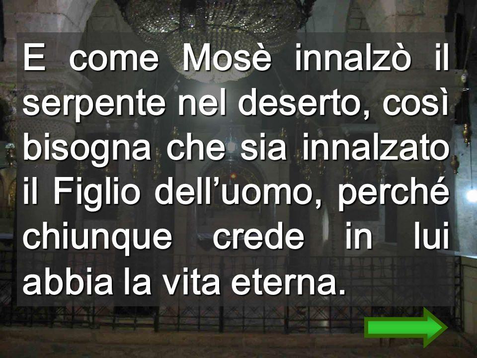 Nella Croce ho attraversato la porta stretta Per portare la Croce, devi discendere... Ingresso nel S. Sepolcro