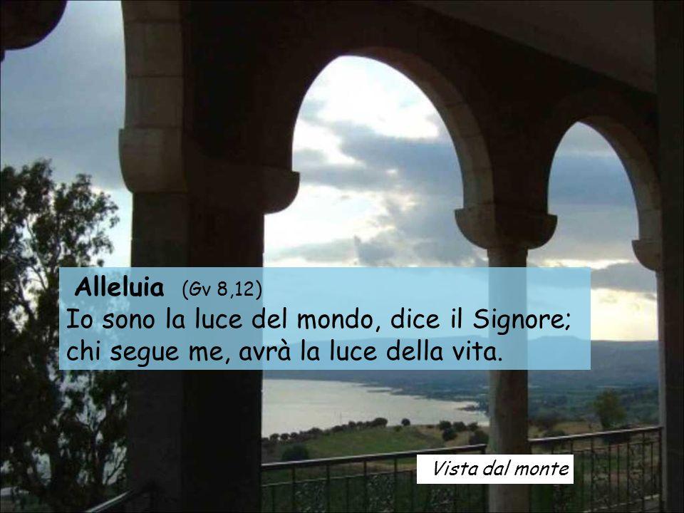 Vista dal monte Alleluia (Gv 8,12) Io sono la luce del mondo, dice il Signore; chi segue me, avrà la luce della vita.