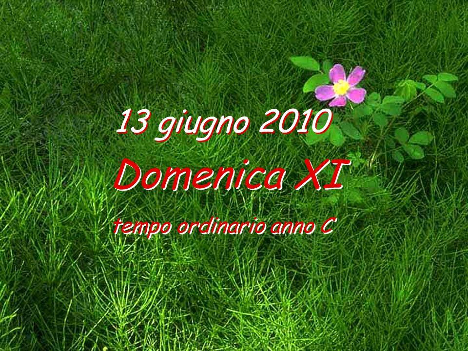 13 giugno 2010 Domenica XI tempo ordinario anno C Domenica XI tempo ordinario anno C