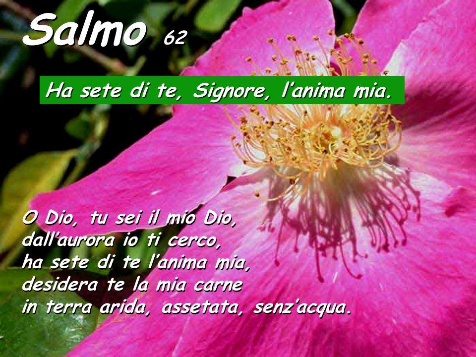 Salmo 62 Ha sete di te, Signore, lanima mia. O Dio, tu sei il mio Dio, dallaurora io ti cerco, ha sete di te lanima mia, desidera te la mia carne in t