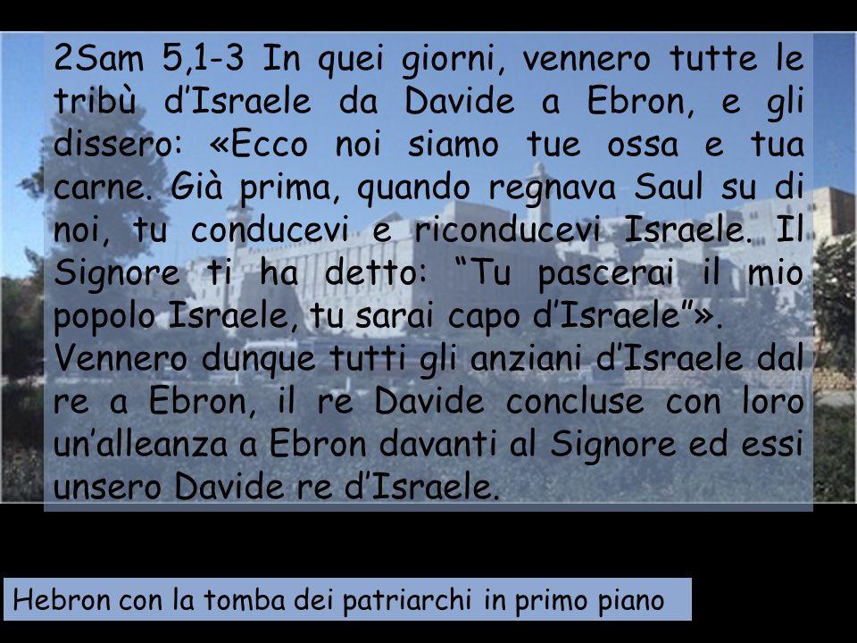 2Sam 5,1-3 In quei giorni, vennero tutte le tribù dIsraele da Davide a Ebron, e gli dissero: «Ecco noi siamo tue ossa e tua carne. Già prima, quando r