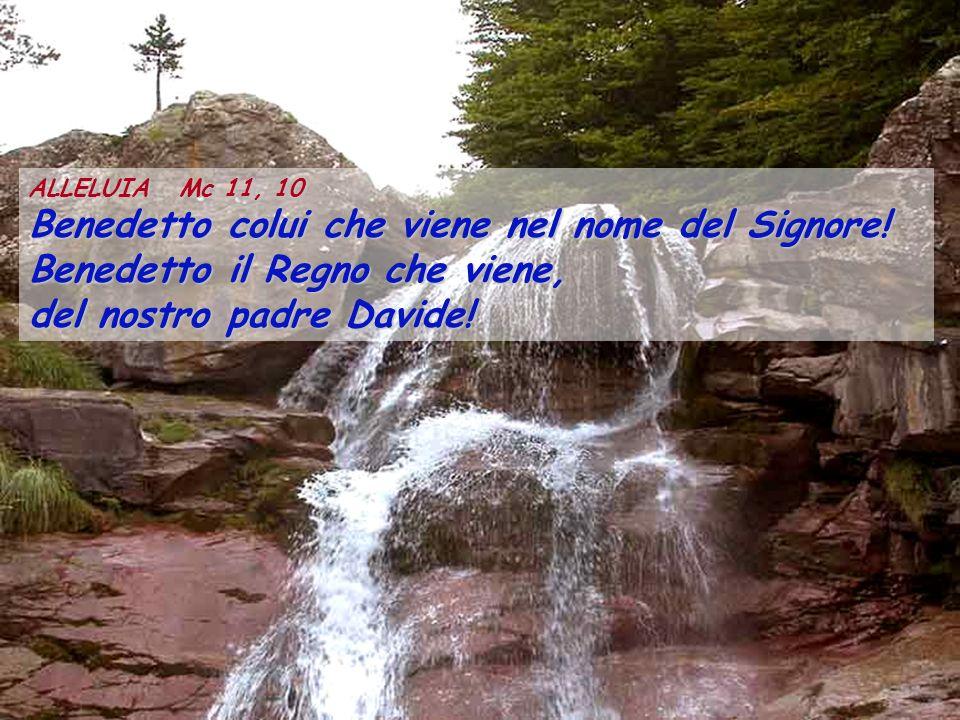 ALLELUIA Mc 11, 10 Benedetto colui che viene nel nome del Signore! Benedetto il Regno che viene, del nostro padre Davide!