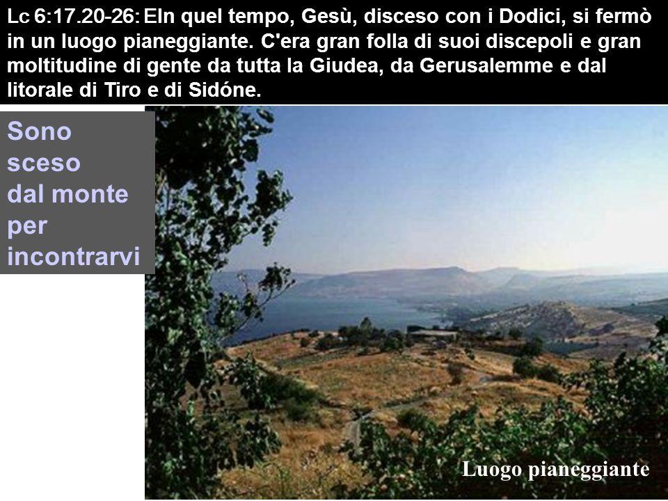 Lc 6:17.20-26: E In quel tempo, Gesù, disceso con i Dodici, si fermò in un luogo pianeggiante.