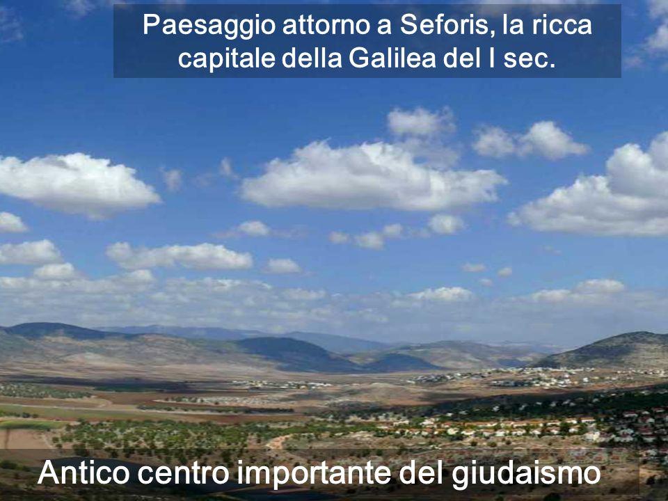 Antico centro importante del giudaismo Paesaggio attorno a Seforis, la ricca capitale della Galilea del I sec.