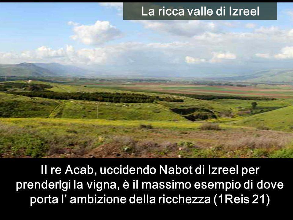 II re Acab, uccidendo Nabot di Izreel per prenderlgi la vigna, è il massimo esempio di dove porta l ambizione della ricchezza (1Reis 21) La ricca valle di Izreel