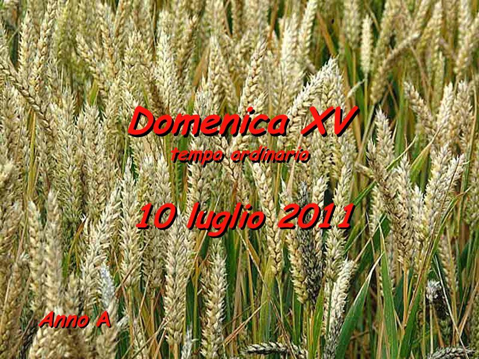 Anno A Domenica XV tempo ordinario Domenica XV tempo ordinario 10 luglio 2011