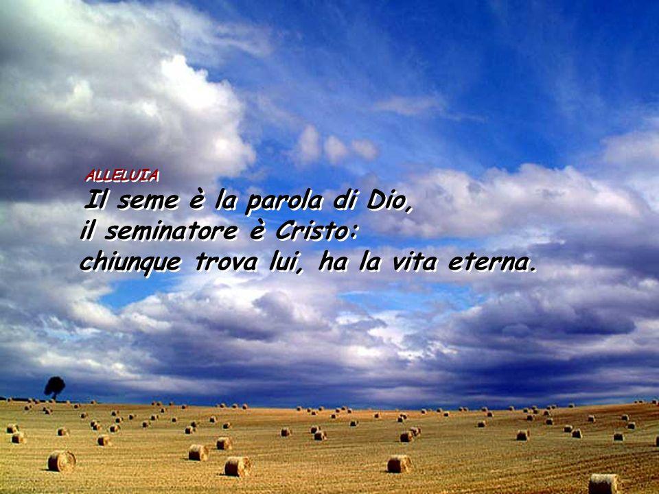 ALLELUIA Il seme è la parola di Dio, il seminatore è Cristo: chiunque trova lui, ha la vita eterna. ALLELUIA Il seme è la parola di Dio, il seminatore