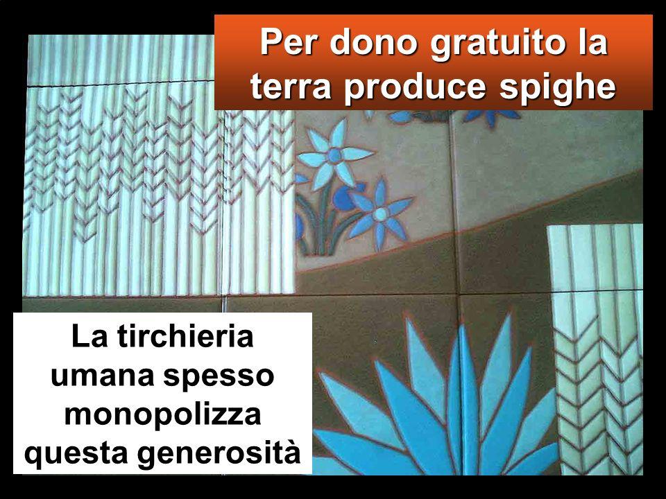 Per dono gratuito la terra produce spighe La tirchieria umana spesso monopolizza questa generosità