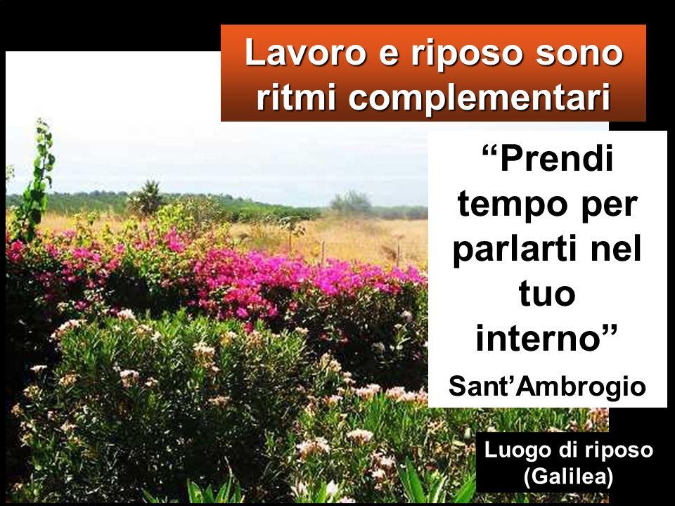 Lavoro e riposo sono ritmi complementari Prendi tempo per parlarti nel tuo interno Sant Ambrogio Luogo di riposo (Galilea)