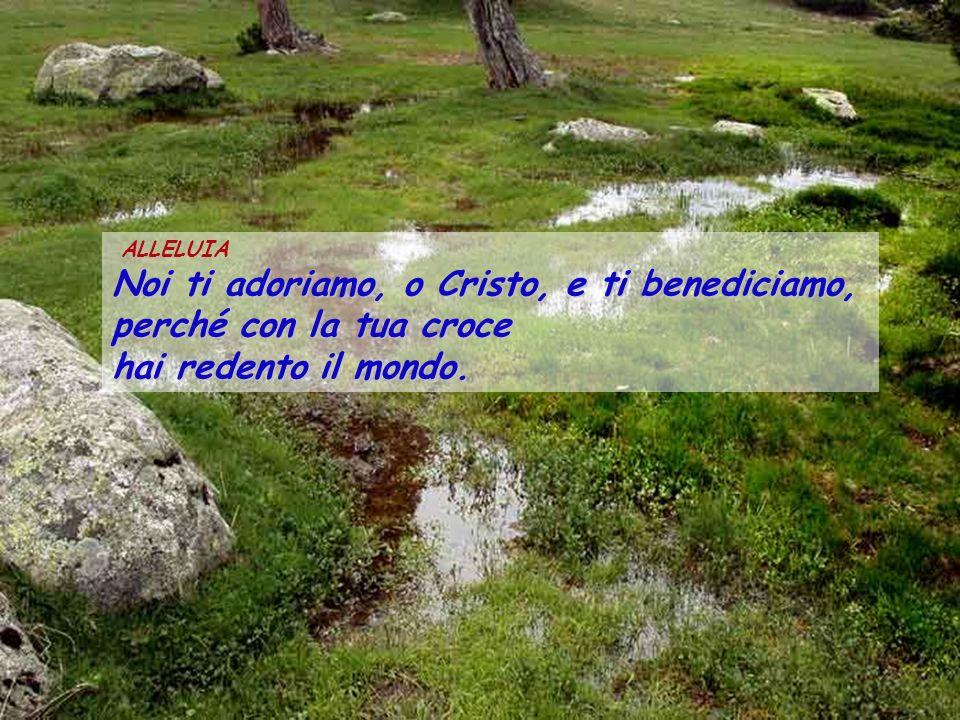 ALLELUIA Noi ti adoriamo, o Cristo, e ti benediciamo, perché con la tua croce hai redento il mondo.