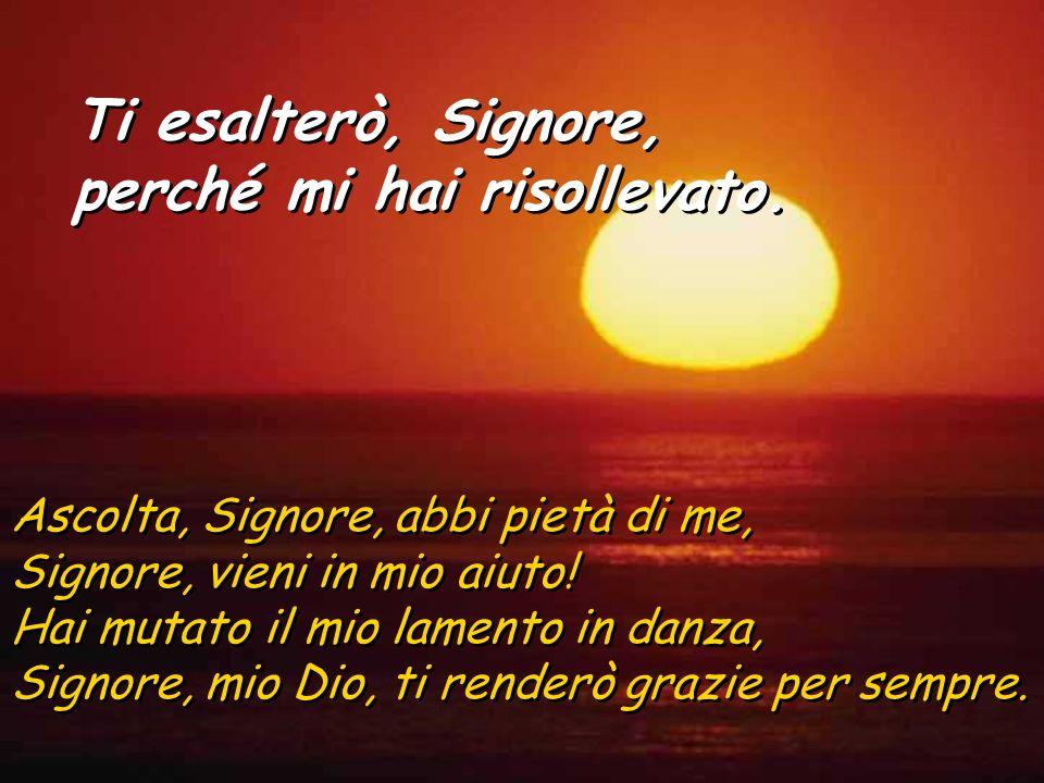 Ascolta, Signore, abbi pietà di me, Signore, vieni in mio aiuto.