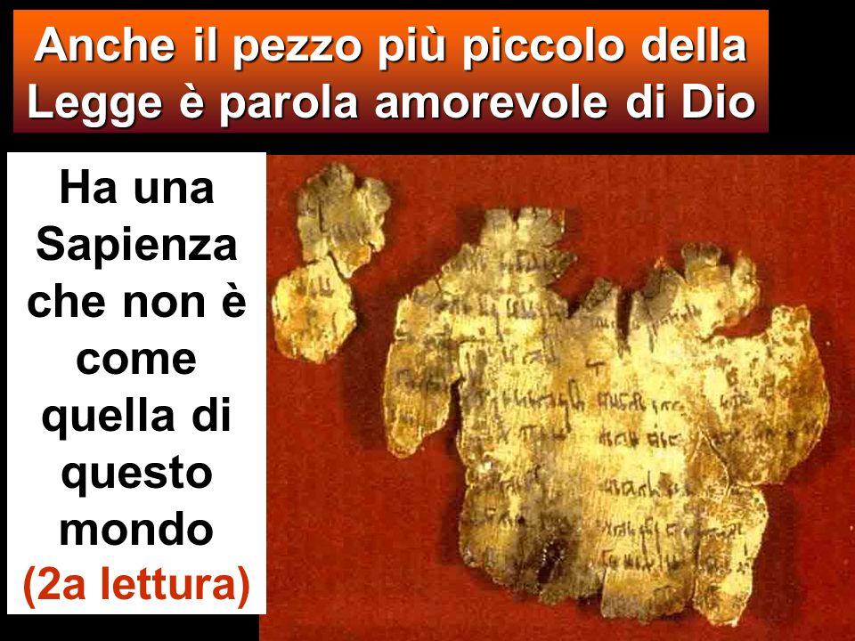 Ha una Sapienza che non è come quella di questo mondo (2a lettura) Anche il pezzo più piccolo della Legge è parola amorevole di Dio