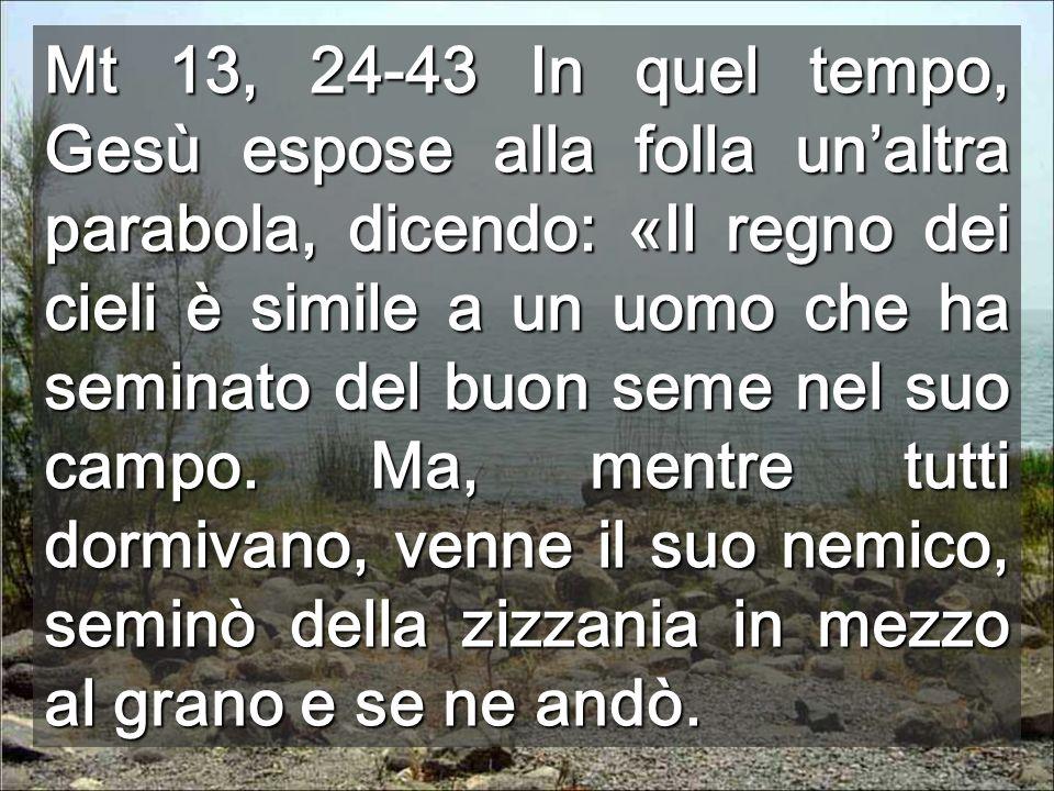 Mt 13, 24-43 In quel tempo, Gesù espose alla folla unaltra parabola, dicendo: «Il regno dei cieli è simile a un uomo che ha seminato del buon seme nel