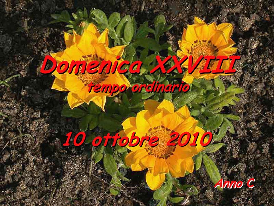 Anno C Anno C Domenica XXVIII tempo ordinario Domenica XXVIII tempo ordinario 10 ottobre 2010 10 ottobre 2010